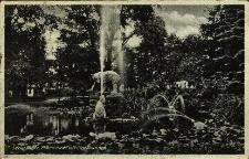Głubczyce : widok na dziewiętnastowieczny park z pomnikiem niedźwiedzia i fontannami