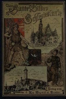 Bunte Bilder aus dem Schlesierlande. Bd.1