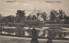 Beuthen : Schwanenteich im Stadtpark