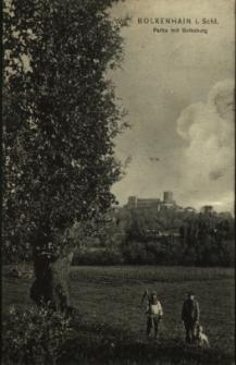 Bolków : widok na zamek od strony parku
