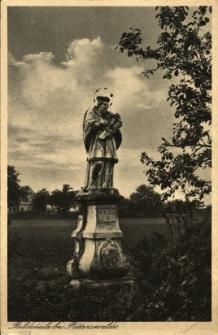 Domaszkowice : figura Św. Jana Nepomucena