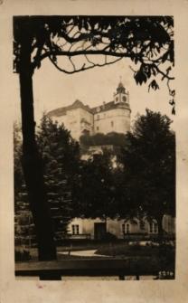 Jawornik : zamek