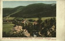 Pieszyce : widok na góry i hotel Forelle w dzielnicy Kamionki