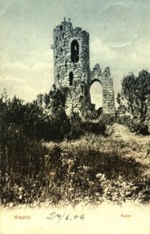 Kopice : ruina