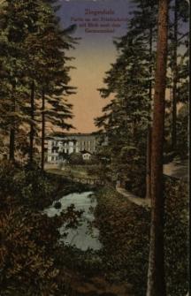 Głuchołazy : widok od strony Zdrojnika [Potoku Sarniego] na dom wczasowy Polonia