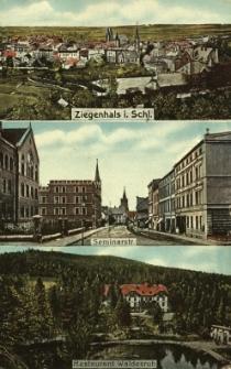 """Głuchołazy : widok ogólny, ulica Seminaryjna, restauracja """"Waldesruh"""""""