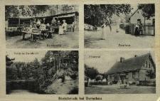 Suchy Bór : leśniczówka, kamionka