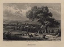 Schlesien. Eine Schilderung des Schlesierlandes: Jägerndorf