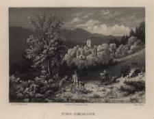 Schlesien. Eine Schilderung des Schlesierlandes: Ruine Nimmersatt