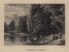 Schlesien. Eine Schilderung des Schlesierlandes: Parkpartie in Buchwald
