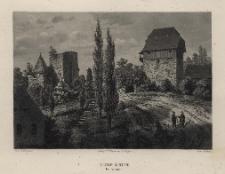 Schlesien. Eine Schilderung des Schlesierlandes: Burg Leipe