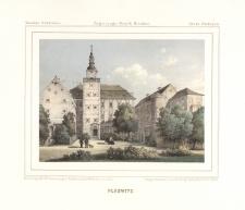 Plaeswitz