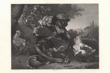 Combat des coqs / Cock's Fighting / Hahneskampf / Bitwa kogutów