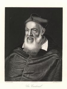 Un Cardinal / A Cardinal / Ein Cardinal / Kardynał