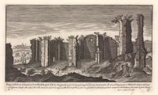 Vestigij delle Terme di Antonino Caracalla