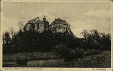 Olesko : zamek króla Jana Sobieskiego