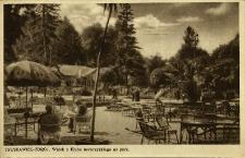 Truskawiec Zdrój : widok z Klubu towarzyskiego na park