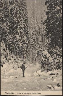 Worochta : zima w reglu pod Czarnohorą