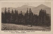Tatarów : krajobraz w Gorganach
