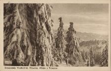 Sławsko : widok z Trościan