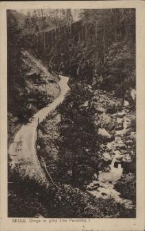 Skole : droga w góry (na Paraszkę)