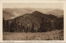 Mikuliczyn : szczyt Hrebla 1292 i Swinianka 1121 w dali pasmo Rokiety 1114 m.