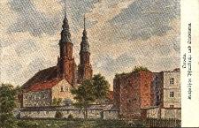 Opole : otoczenie katedry od strony Młynówki