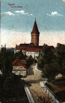 Opole : most, na wprost zamek, z lewej budynek