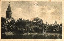 Opole : widok na zamek od strony stawu