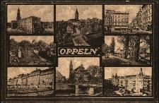 Oppeln : Rathaus, Piastenschloss, Ring und Nicolaistrasse, Promenade, Moltkestrasse, Evg. Kirche mit Schlossbrücke, Friedrichsplatz, Schlosspark