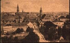 Opole : panorama miasta od strony zamku m.in. kościół, ratusz