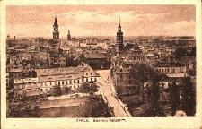 Opole : panorama miasta od strony zamku