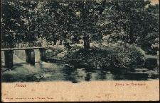 Nysa : mostek w parku miejskim
