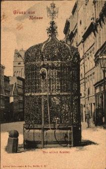 Nysa : studnia miejska (1686 rok) z ozdobnym okratowaniem i dwugłowym orłem