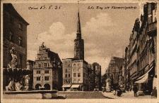 Nysa : fragment rynku, z lewej strony fontanna Trytona