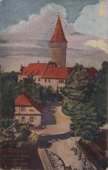 Opole : zamek piastowski